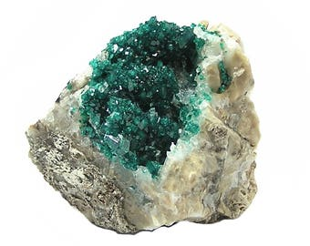 Dioptase Emerald Green Crystal Druzy on rock matrix Classic Mineral Specimen from Kazakhstan Raw Crystal Gemstone Collector's Choice