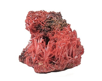 Crocoite Red Orange Crystal Cluster Rare Mineral Specimen Mined in Tasmania Australia, from an Estate Geo Collection