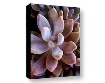 Purple Sedum Photo Canvas, Succulent Gallery Wrapped Canvas, Sedum Photography Canvas, Botanical Sedum Canvas, Nature Photo Sedum Art