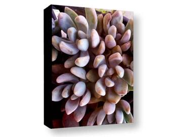 Sedum Photo Canvas, Deep Purples Succulent Gallery Wrapped Canvas, Sedum Photography Canvas, Botanical Sedum Canvas, Nature Photo Sedum Art