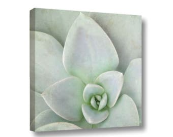 Sedum Photo Gallery Wrapped Canvas, Mint Green Succulent art, Pastel Botanical Sedum Square Canvas, Nature Photo Sedum Art, Kitchen Art