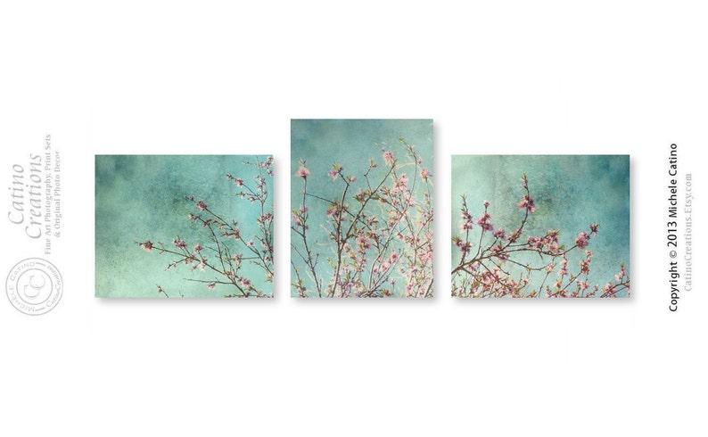 Kirschblüte datieren Promo-Code