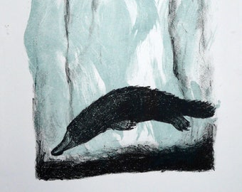 Lithograph, Platypus