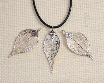 SALE Leaf Necklace, Real Evergreen Leaf, Silver Evergreen Leaf, Silver, Real Leaf Necklace, Silver Evergreen Leaf Pendant, SALE26