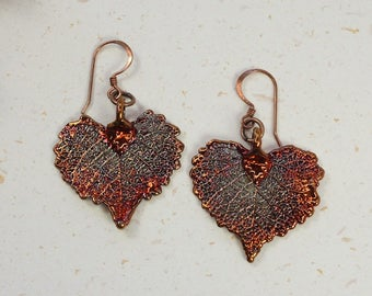 SALE Copper Earrings, Real Leaf Earrings, Cottonwood Earrings, Heart Shaped, Real Leaf jewelry SALE3