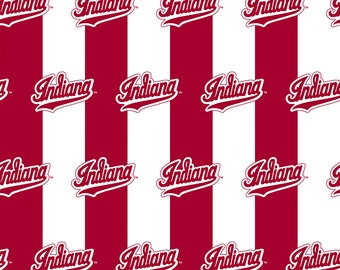 NCAA Collegiate 3 Section Serving Tray Indiana University