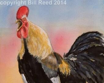 Crowing Rooster - original watercolor, barnyard rooster, kitchen art, chickens