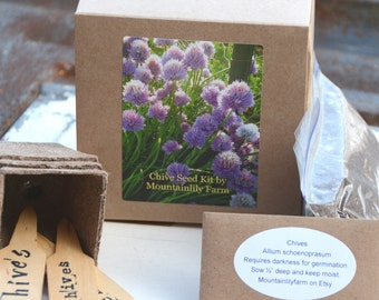 Chive Seeds, Indoor Herb Garden Kit, Easy to Grow Chives, Great for Container Gardens and Urban Gardening, DIY Plant Kit, Great Hostess Gift