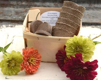 Zinnia Garden Seed Kit, 6 Zinnia Seed Varieties in Gift Basket, Gardening Gift Set, Great Mother's Day Gift or Gift for Gardener