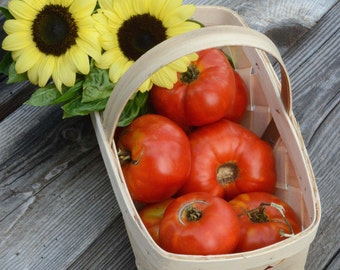 Red Beefsteak Tomato, Heirloom Tomato Seeds, Open Pollinated Vegetable Seeds, Easy to Grow Heirloom Toamtoes