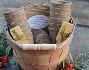 Herb Garden Gift Basket, Heirloom Seeds in Harvest Basket, Great Gift for Gardener or Gift for Mom, Garden Kit for Herbs, Hostess Gift Set