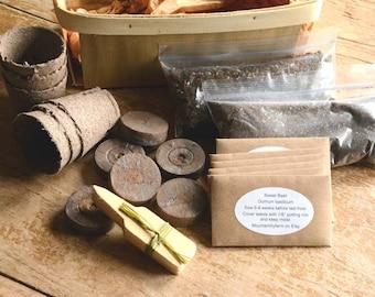 Indoor Herb Garden, 6 Herb Seed Varieties and Garden Supplies in Gift Basket, Great Gift for Gardener or Mother's Day Gift