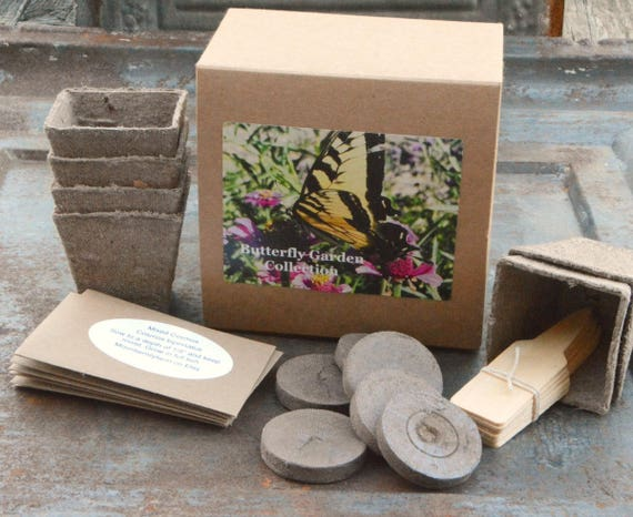Butterfly Plant Kit Butterfly Garden Gift Set Free Shipping   Etsy