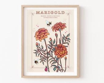 Marigold Wall Art Print, October Birth Flower Illustration Print