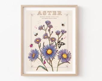 Aster Wall Art Print, September Birth Flower Illustration Print