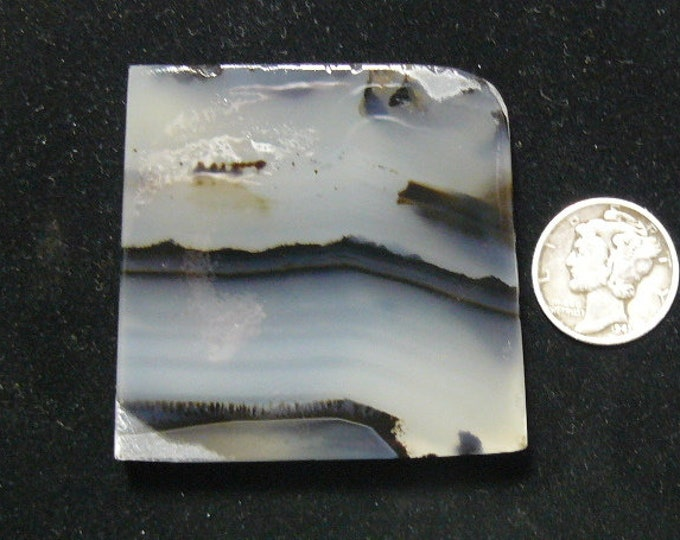 Montana Agate preformed rough slab, natural, 47 x 47 x 8.5 mm, black dendrites,  smoky clear translucence quartz (rs31515)