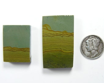 Craig Gulch 2 preformed picture Jasper rough slabS, rare, natural (rs41312)