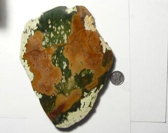 "Large Chrome Chalcedony slab, polished 1 side, beautiful specimen,  6"" x 4 1/2"" x 12 mm, polished 1 side (sp9801)"