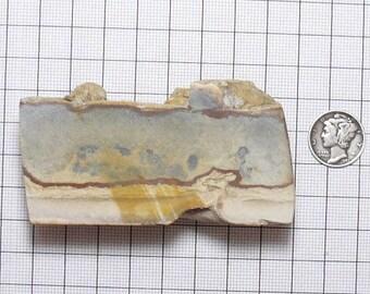 Chicken Track Picture Jasper specimen chunk.  76 x 36 x 24 mm,  natural, chicken track on top (rc121701)