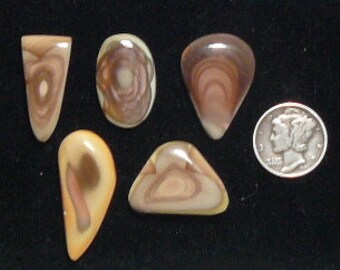 Royal Imperial Jasper designer cabochons, natural, mirror finish, small size, lot of 5 cabs. (c61701)