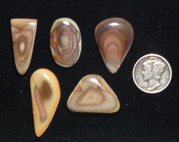 5 Royal Imperial Jasper designer cabochons, natural, mirror finish, small size, price is for 1 cab. (c61701)