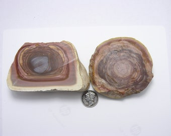2 large thick Royal Imperial Jasper rough slices,  multi orb, big size is rare in this material.  (s72612)