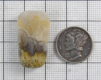 Prudent Man Plume Agate Cabochon, 15x27x6 mm, natural Idaho stone, translucent, small size (c52101)