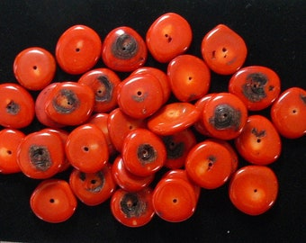 Red Bamboo Coral beads (dyed), 18 - 20 mm drilled beads, 35 beads (cb1611)