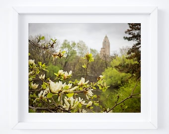 Central Park print - New York City photography - Manhattan wall art - Travel photo - NYC photo print decor - Girlfriend Christmas gift