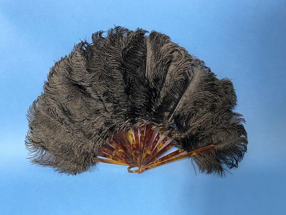 Edwardian ostrich feather fan