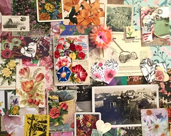 """50+ piece """"In the Garden"""" Ephemera Pack"""