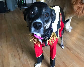 Dog costume Pet costumes Dog halloween Ring master costume Circus costume Dog clothes Pet clothes & Dog halloween costume Dog flying monkey costume The wizard