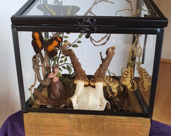 Butterfly Glass Case Fairy Tale Showcase Home Decor Display Cabinet