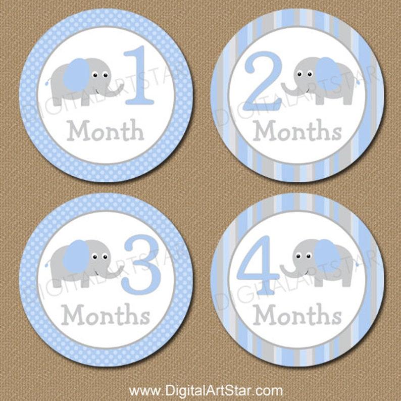 Elephant Monthly Milestone Stickers  Printable Onepiece image 1