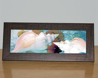 Canvas art -Seashells and Sea Fan Framed