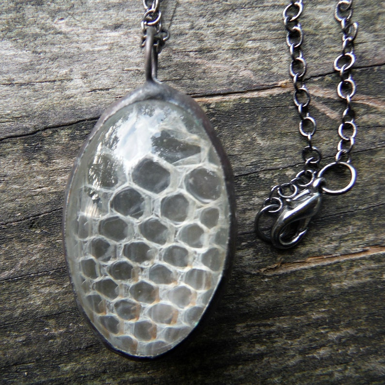 Real Snake Skin Shed Glass Terrarium Necklace Etsy