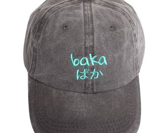 Baka (Teal) - Dad Cap