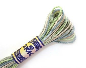 DMC 4065 Variegated 6 Strand Floss Morning Meadow