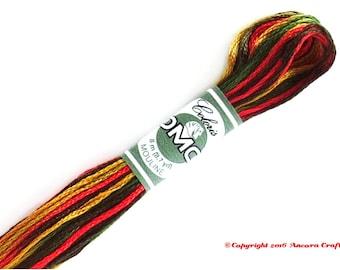 DMC 4511 Coloris Variegated 6 Strand Floss Ete Indien (Indian Summer)
