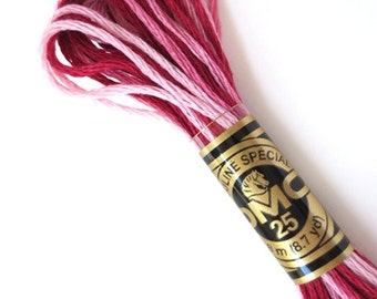 DMC 99 Variegated 6 Strand Floss Raspberry Shaded  Ombre