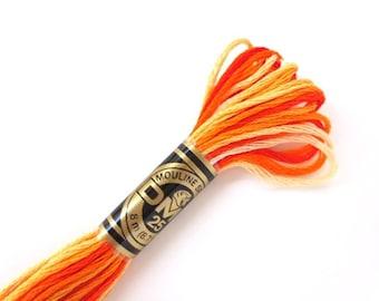DMC 51 Variegated 6 Strand Floss Burnt Orange Shaded Ombre