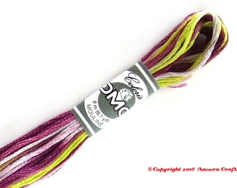 DMC 4503 Coloris Variegated 6 Strand Floss Glycine (Wisteria)