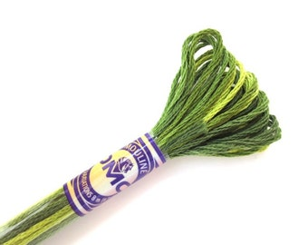DMC 4066 Variegated 6 Strand Floss Amazon Moss