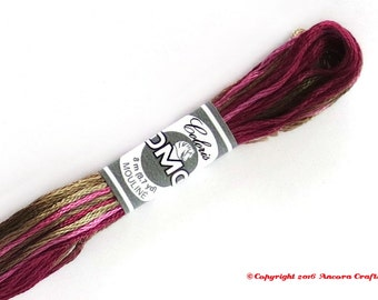 DMC 4504 Coloris Variegated 6 Strand Floss Hortensia (Hydrangea)
