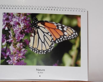 2019 Wall Calendar  Nature Pictures