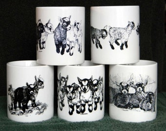 MUG SPECIAL #2 - Any Four 11 oz. Pygmy Goat Mugs for 25.00