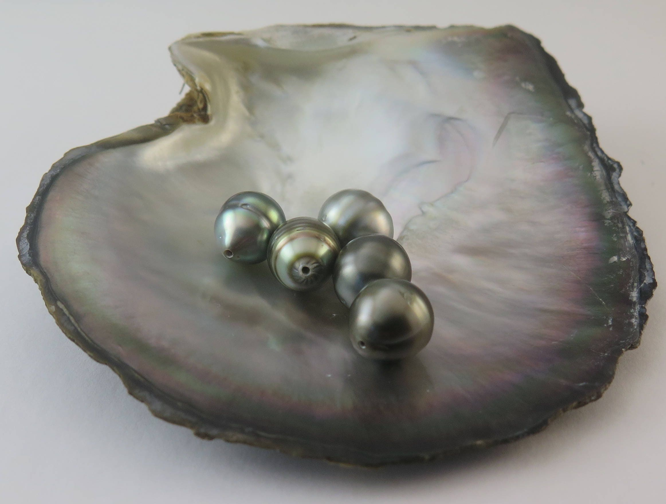 Light 12.50 Dollars a Pearl Pearl size: 09.00-09.99mm Drilled to 1mm SAVE 10/%  PACK Of 5 Circle Tahitian Black Pearls #7 AA