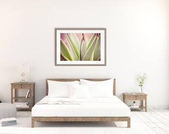 Agave Art, Fine Art Photograph, Succulent Print, Modern Southwest, Home Decor, Office Decor, Lobby Art, Housewarming Gift, Purple and Green