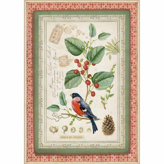 Rice Paper Decoupage Stamperia Birds 1 x A4 Size Sheet