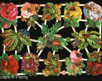 Stunning Rose German Embossed Scrap Die Cut Relief Flowers  WOW   EF7330